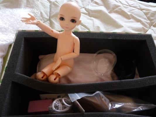 Galerie de vos dolls chauves P1000134s